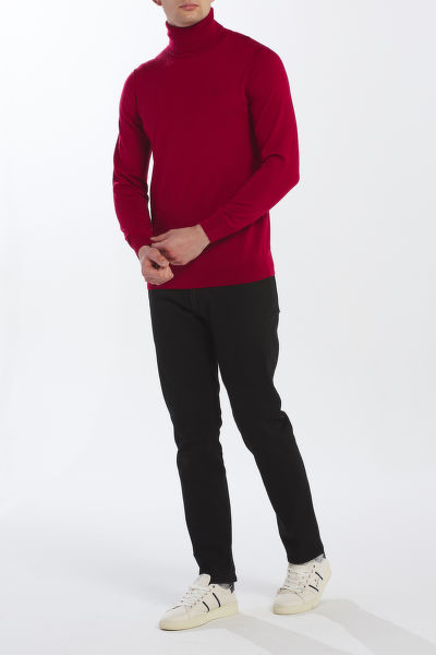 SVETR GANT D1. WASHABLE MERINO TURTLENECK